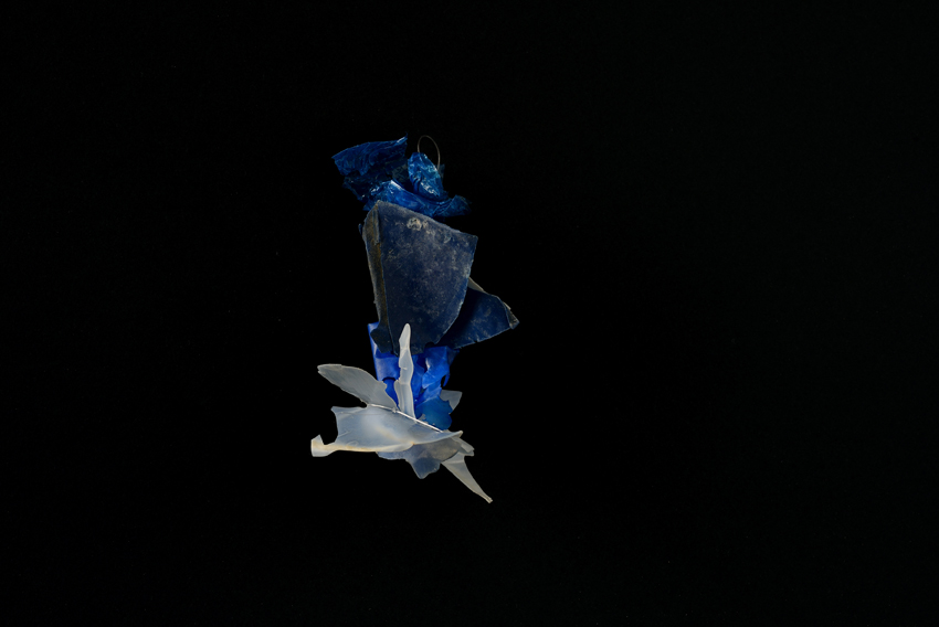 Plancton Plastique
